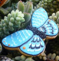 y mariposas3